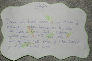 SAM_9032